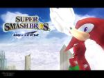 Super Smash Bros Universe - Knuckles by weegeeish