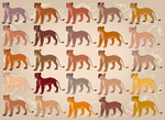 25 Lioness Adopts - PayPal - THREE LEFT by EmilyJayOwens