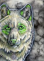 ACEO- The Stare by cloudstar-wolf