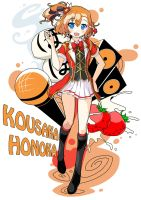 Love Live! Artbook - Kousaka Honoka by howeirong