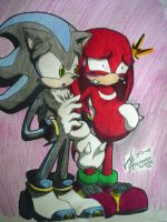 Labor Pains ::Knuxiphiles:: by xKiaxExPyrosx