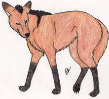 Maned Wolf by Leeliothestica
