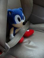 Buckle Up, Sonic by theOrangeSunflower