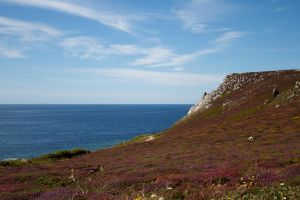 Brittany Coast 14 Stock by lokinststock