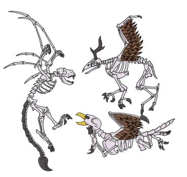Bone Wyvern and Hippogriff and Griffin by thelimeofdoom