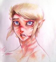 SHC- This is me, Link--- what is left of him. by Kim-SukLey
