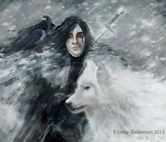 Jon Snow and Ghost by Veronica-Art