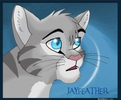 ThunderClan's Medicine Cat by WindWo1f