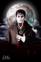 Tim Burton's Dark Shadows by Ruloradio
