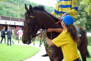 Czech Derby '11 by FantasyWordful