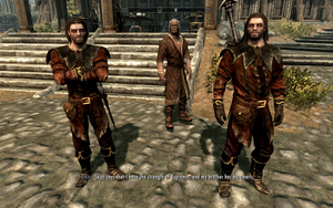 Farkas 'n Vilkas in Jester's Armour by Mediziner