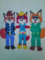 2 foxes and a vixen by cartoonprincessML