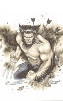 Wolverine Copic Marker by Sajad126
