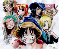 The Straw Hat Crew... by ina2107
