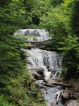 Evergreen Waterfall by Penguin-616