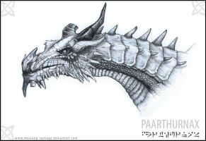 Paarthurnax by Mustang-sauvage