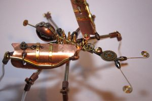 Steampunk insects - Arthrobots by hardwidge