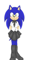 Kampfer Sonic by XEver-Blue-ZoneCopX