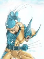 Icy Wolverine by Phoenix-61