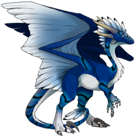 Blå Skin Wildclaw F Dragon by mimro-haica