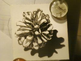 Scratch Board Pine Cone by PixelNuggets