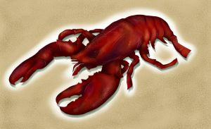 The Lobster by Keith0186