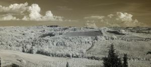 Tuscany (IR) by Tigerzclaws