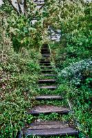 The Forgotten Stair by TreborEevob