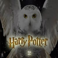 Harry Potter DVD Cover 2 by SpicyLawrence