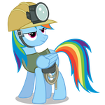 Rainbow Dash in Climbing Gear by TizerFiction