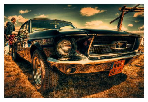 Mustang by Riffo
