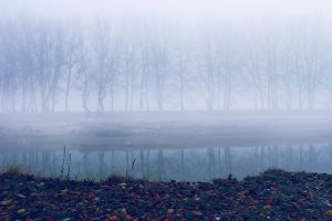 River Fog by valiunic