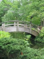 Japanese Garden Bridge by CloakofStars