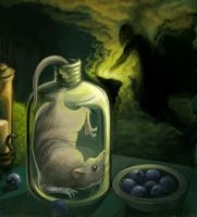 The Magical Properties of Rats by Ill-wovenElm