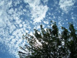 Clouds and tree 3 by Hermit-stock