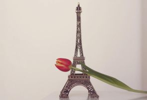 i love miniature eiffel towers by by-sannee