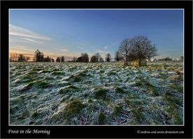 Frost in the Morning by Andrew-and-Seven