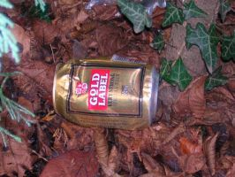 Beer Litter by lilleypants