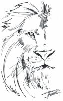 M.I.A Aslan by KidNotorious