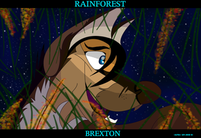 RAINFOREST by alphakw