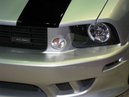 DUB Saleen Mustang Detail by Qphacs