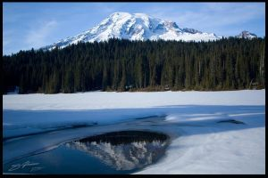 Rainer Reflections by unAmerican