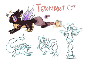 Tennant Ref by ForTheLoveOfWalrus