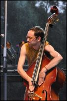 Nagual: the contrabassist by w-p