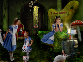 Curious In Wonderland by magicsart