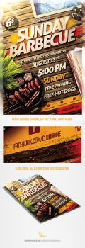 Barbecue BBQ Party Flyer Template by saltshaker911
