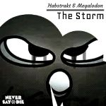 Habstrakt and Megalodon:The Storm (CD Album Cover) by xmaster555