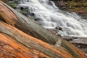 F.L. Ricketts Log Falls by somadjinn