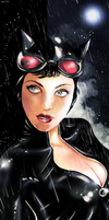 Catwoman - Wet Cat by MassimoGuidi