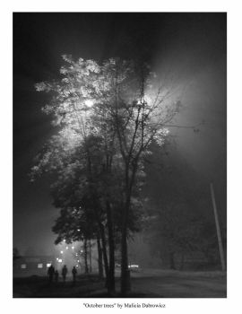 noir october trees by malicia-dabrowicz